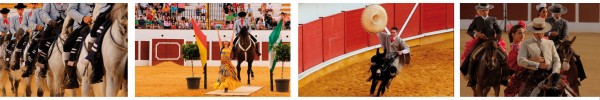 caballos oferplan andalucia sueña