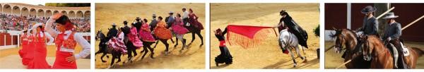 caballos 2 oferplan espectáculo