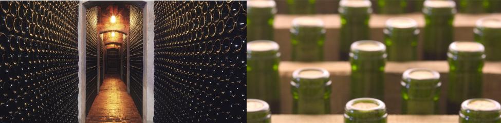 caja de 6 botellas Pirineos 3040 tinto D.O Somontano 2018 bodega pirineos