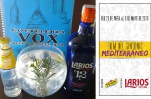 2 Gin-Tonics en Coctelería Vox Pedregalejo