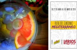 2 Gin-Tonics en Málaga Fussion Perchel